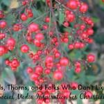 Seeds, Thorns, and Folks Who Don't Like Me