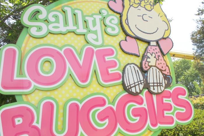 Sally's Love Buggies