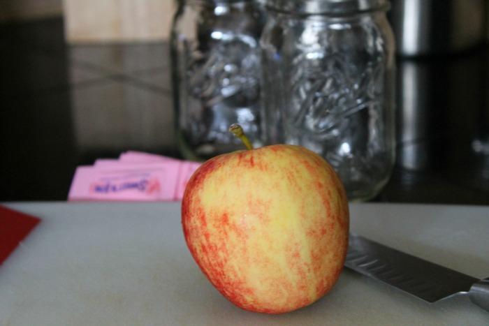 Apple Spritzer 1