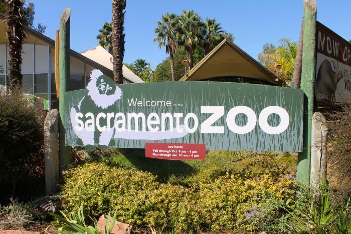 Sacramento Zoo 1