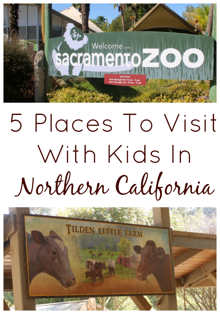 5 Places To Visit With Kids In Northern California
