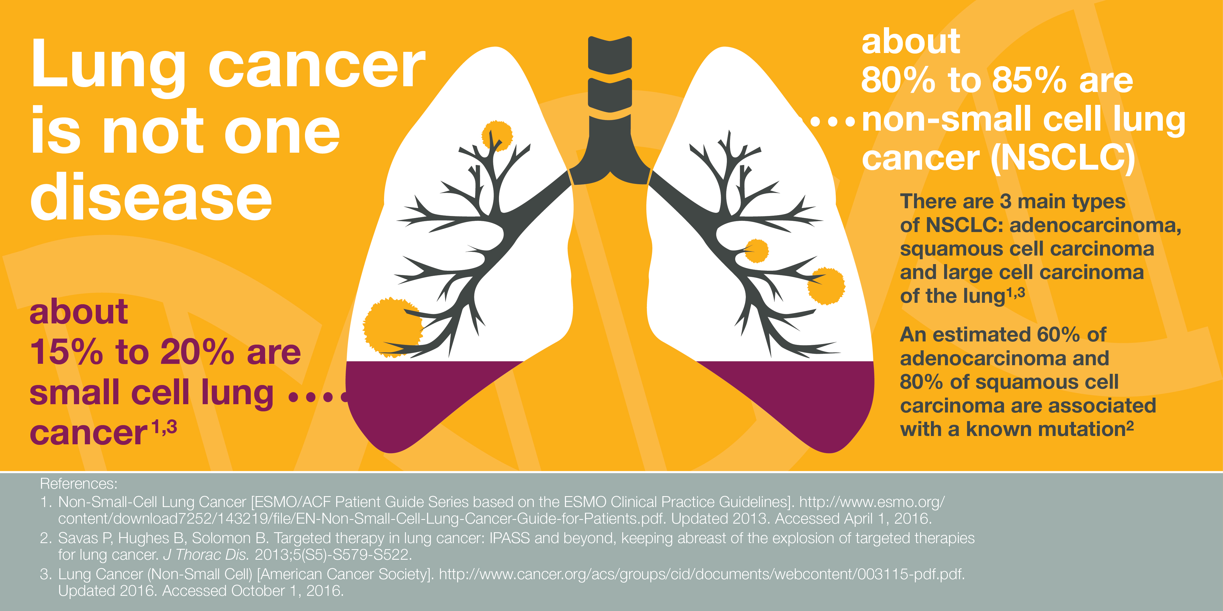 Lung Cancer Statistics (1)